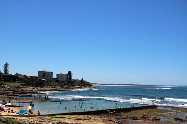 shelly beach och ocean pool i cronulla sydney, australien - isvak bildbanksfoton och bilder