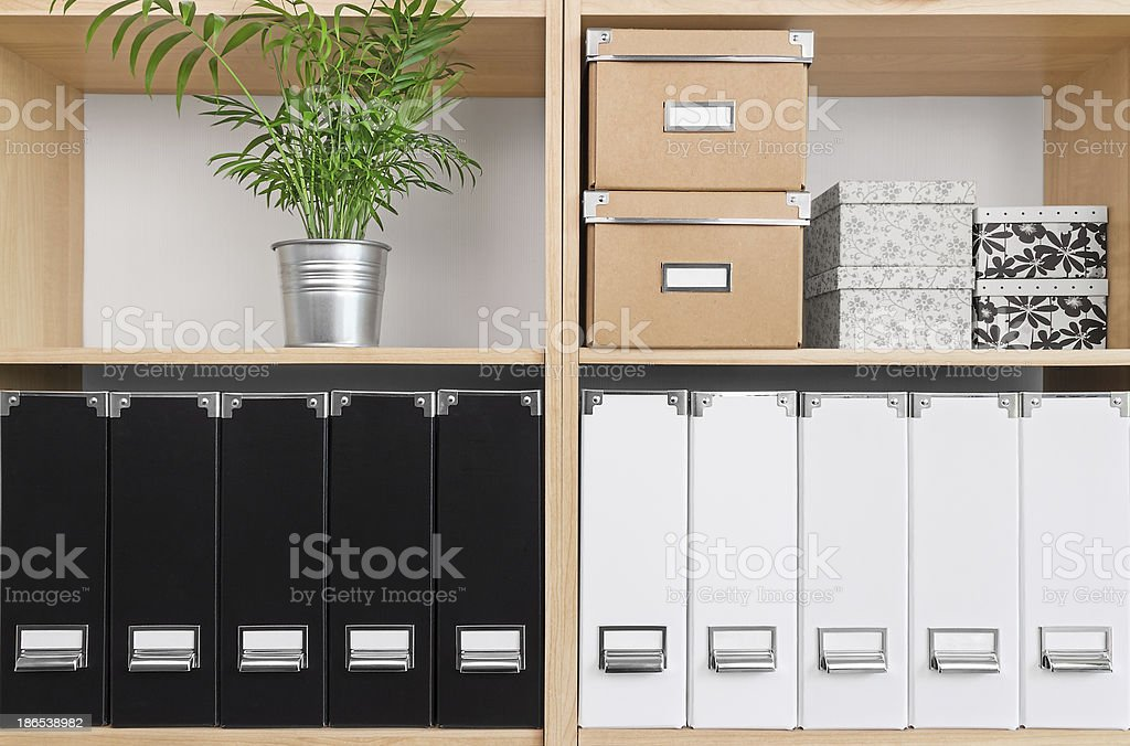 Shelves with boxes, folders and green plant stock photo