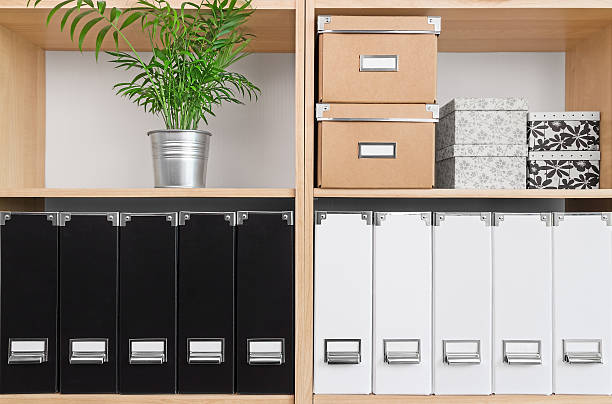 Shelves with boxes, folders and green plant Shelves with storage boxes, black and white folders, and green plant. arrangement stock pictures, royalty-free photos & images