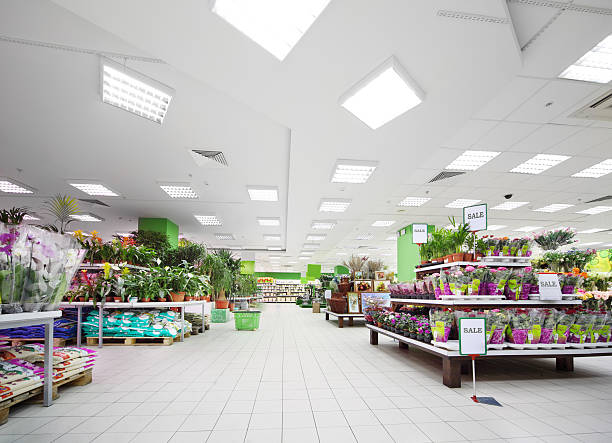 Shelves with variety of pottery plants inside supermarket stock photo
