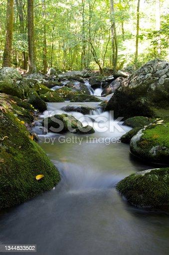 istock Shenandoah National Park - Hazel River Trail 1344833502