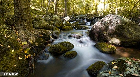 istock Shenandoah National Park - Hazel River Trail 1344833609