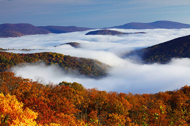 Shenandoah National Park Autumn colors in Shenandoah National Park, above the clouds. blue ridge mountains stock pictures, royalty-free photos & images