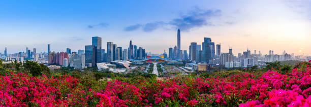 Shenzhen Futian District City paisaje - foto de stock