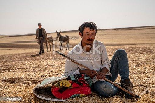 istock shepherd and shepherd donkey resting 1279338903