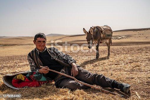 istock shepherd and shepherd donkey resting 1279384482