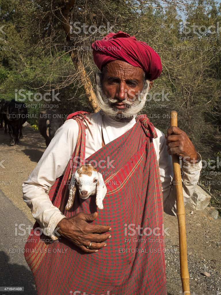 Shepherd carrying a lamb. royalty-free stock photo