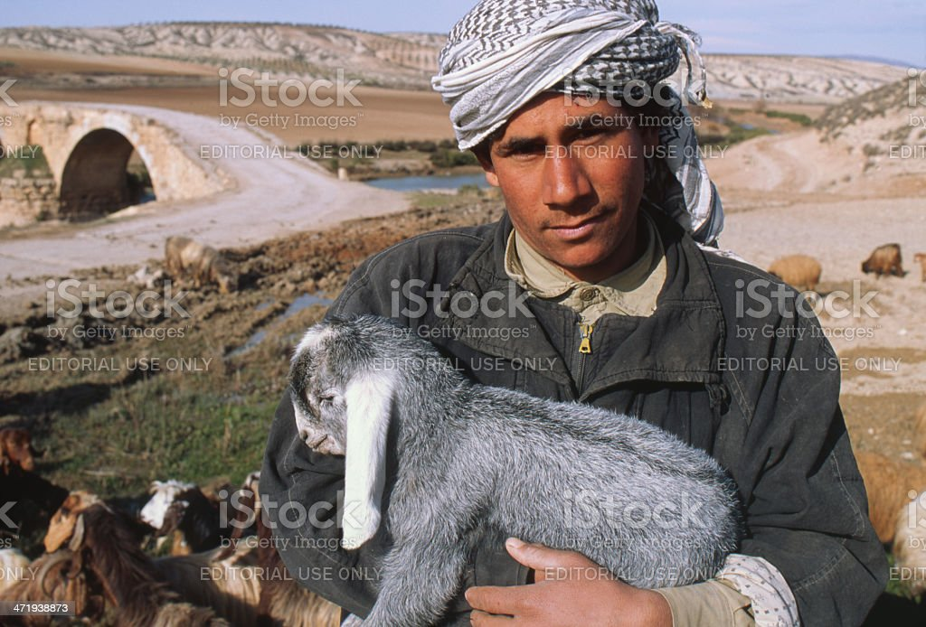 Shepherd holding goat kid, Syria stock photo