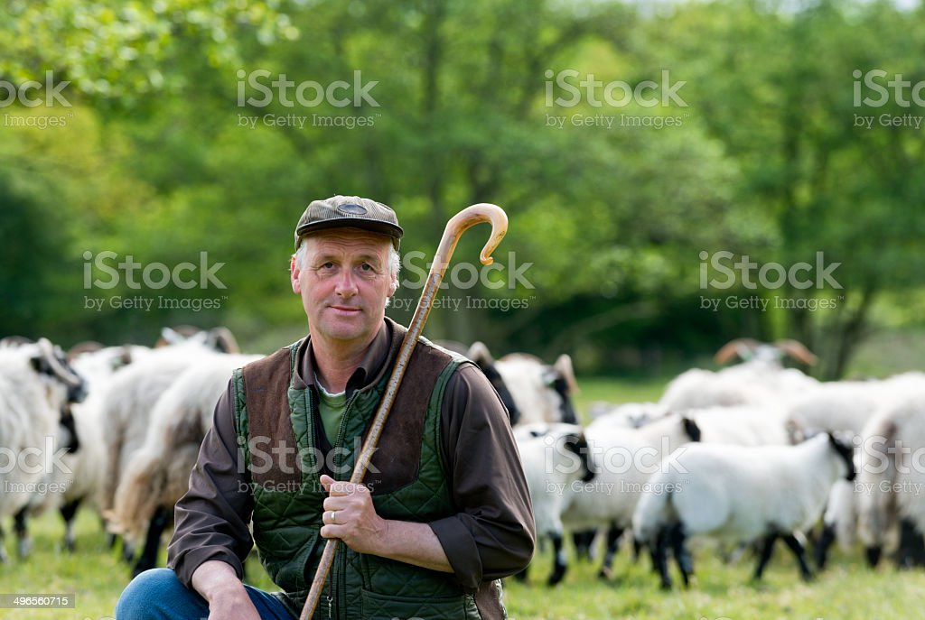 Shepherd leaning on his staff stock photo