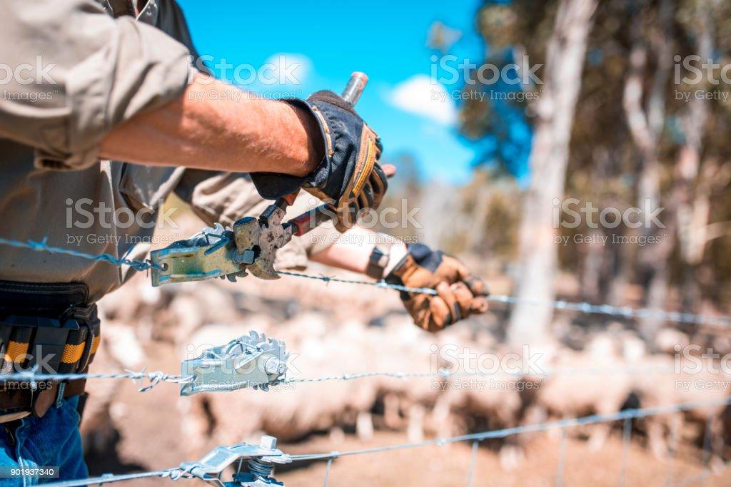 Hirte Reparatur Zaun – Foto
