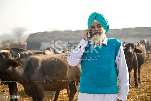 Indian shepherd talking on mobile phone
