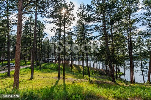 Sheridan lake Campground in the Black Hills, South Dakota in the evening light.