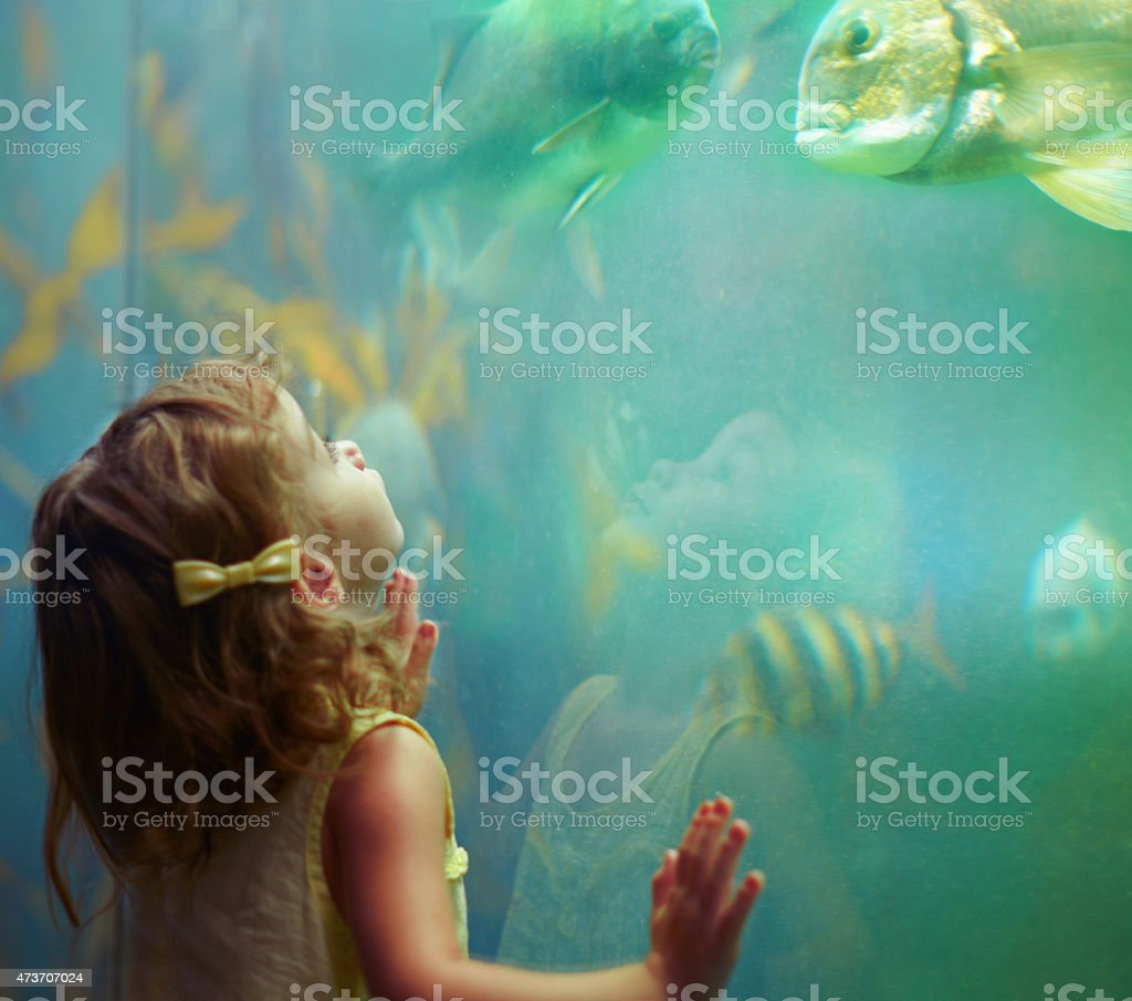 She's a curious little girl stock photo