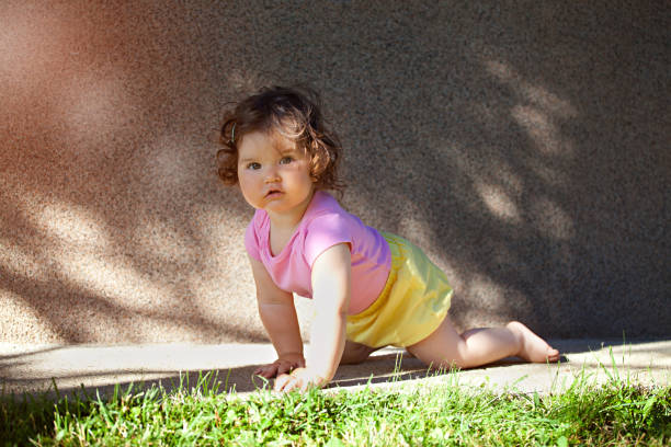 she's on the move, crawl - tamara dragovic stock photos and pictures