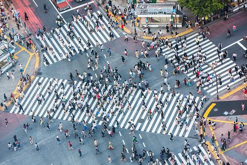 Shibuya Crossing Aerial