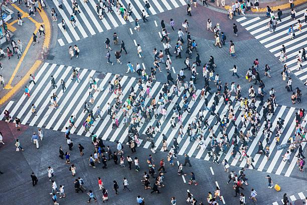 shibuya crossing aerial - shinjuku ward stock photos and pictures