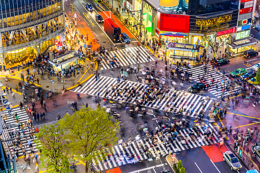 Shibuya Crossing In Tokyo Stock Photo - Download Image Now