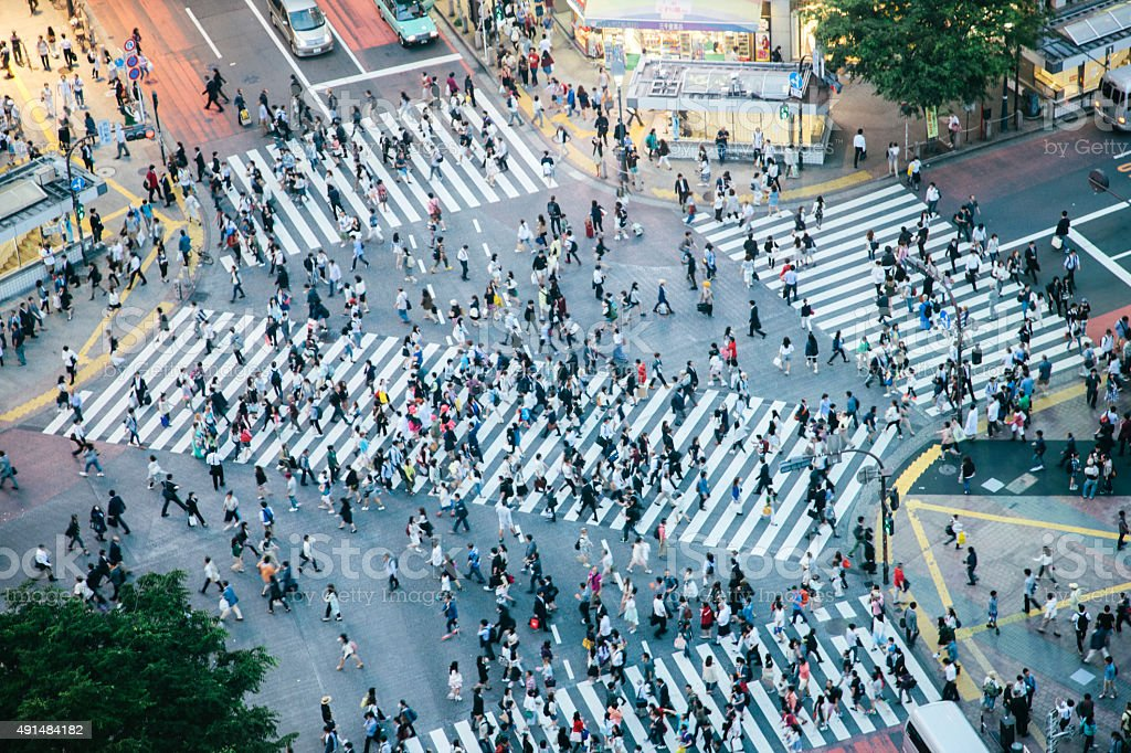 Shibuya crossing, pedestrians crossing the road, aerial view, evening stock photo