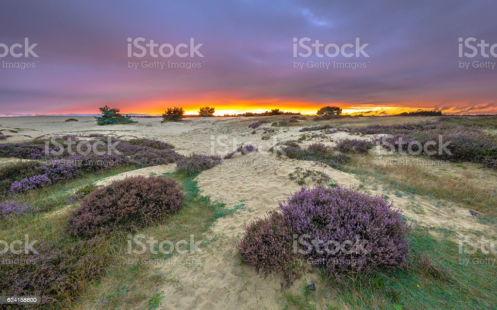 Shifting sands and Heath sunset stock photo