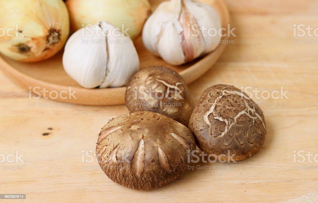Shiitake mushroom Lizenzfreies stock-foto