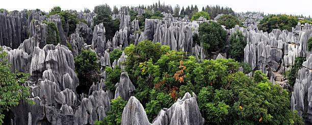shilin stone forest - 쿤밍 뉴스 사진 이미지