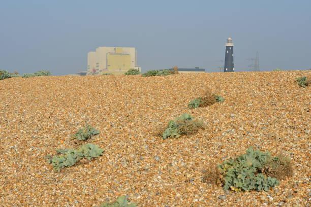 Kieselstrand bei Dungeness vor dem Kernkraftwerk und dem alten Leuchtturm. – Foto