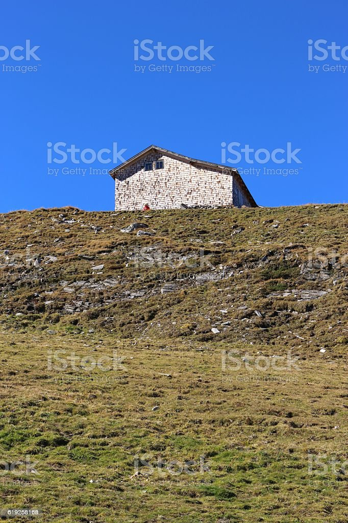 Shingle-covered cottage in the Alps, Austria, Europe. stock photo