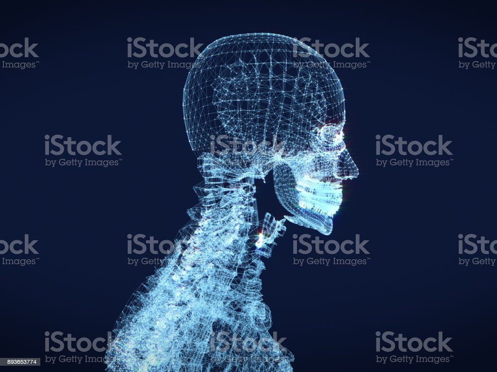 shining dots and line of skeleton ,body  human .3D rendering. stock photo
