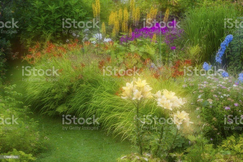 Shining Flowers royalty-free stock photo