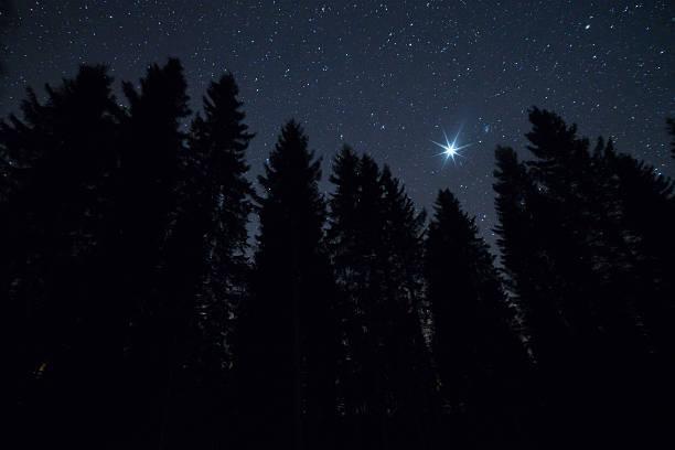 Shining star stock photo