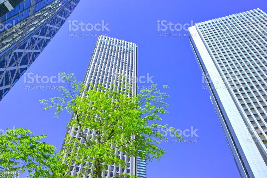 鮮綠色的新宿高層建築城市 免版稅 stock photo