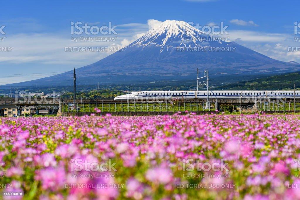 Shinkansen-Hochgeschwindigkeitszug pass Berg fuji – Foto