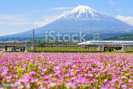 Shizuoka, Japan - May 05, 2017:  JR Shinkansen thundering to Mountain Fuji and Shibazakura at spring. N700 Bullet train transit between Tokyo and Osaka operated by Japan Railways company.