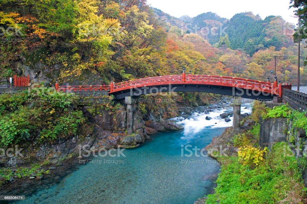 Shinkyo bridge fall stock photo