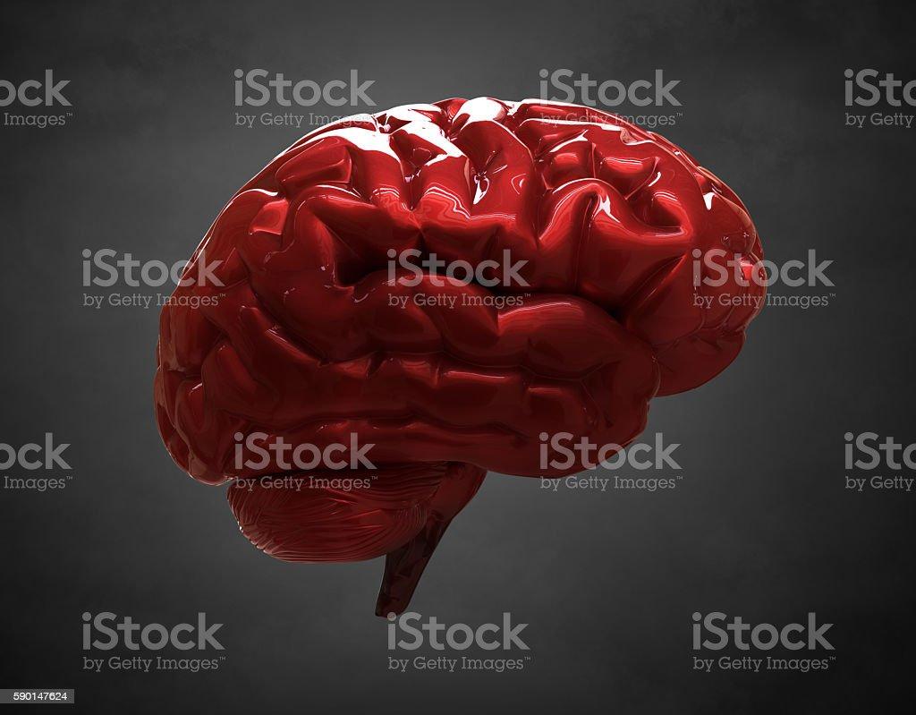 shiny brain stock photo