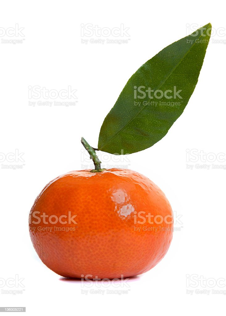 Shiny Clementine Fruit royalty-free stock photo