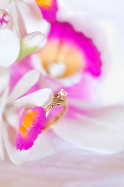 glänzende engagement diamantring am orchid. - birnen verlobungsringe stock-fotos und bilder