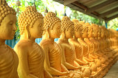 Close up shiny golden buddha statues in a row in buddhist temple, Big Buddha temple in Phuket, Thailand