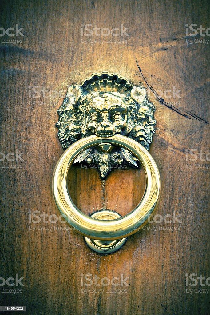 Shiny Lion Knocker on Wooden Door, Digital Cross Process stock photo