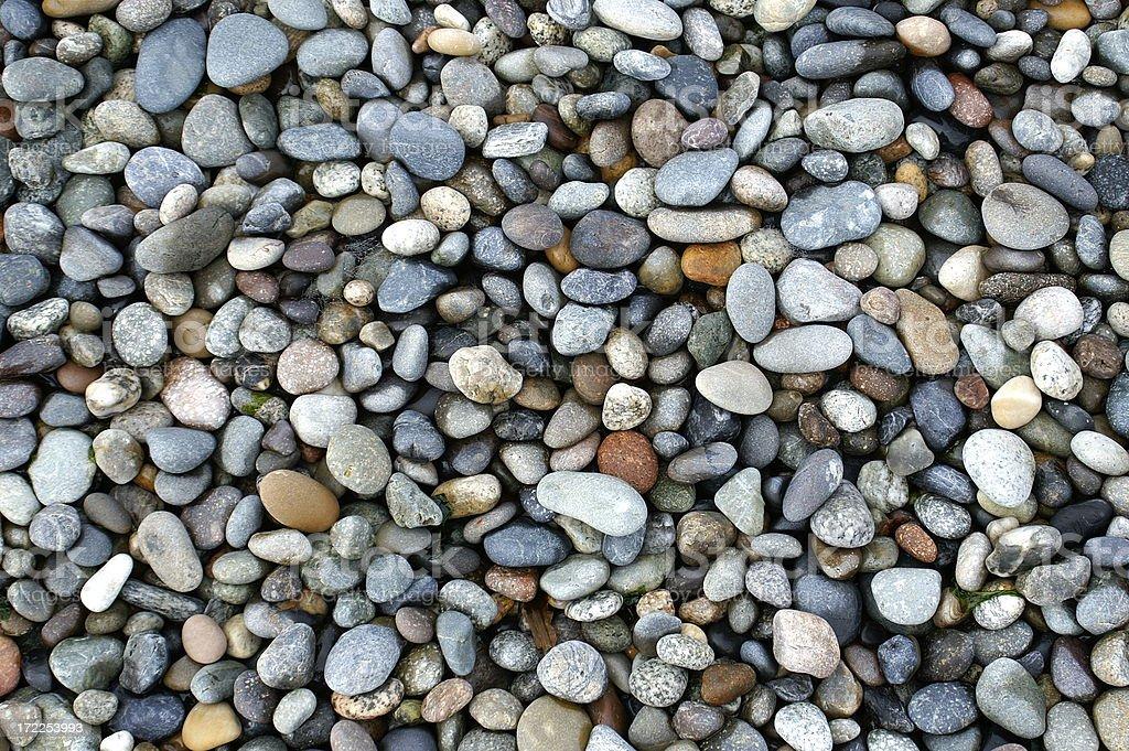 Shiny Wet Little Stones on Ocean Shore, Pacific Northwest royalty-free stock photo