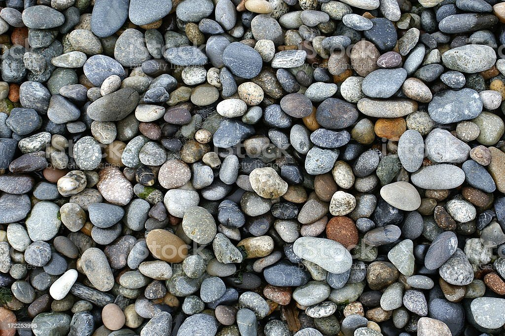 Shiny Wet Pebbles on Ocean Shore, Pacific Northwest stock photo