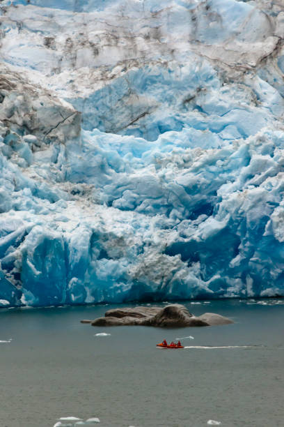 Ship Launch and Glacier Three person ship launch sailing along the base of Iceberg Glacier.  View from the ship Oceania Regatta at the head of Tempanos Fjord, Bernardo o'Higgins National Park, Chile. michael stephen wills glacier stock pictures, royalty-free photos & images