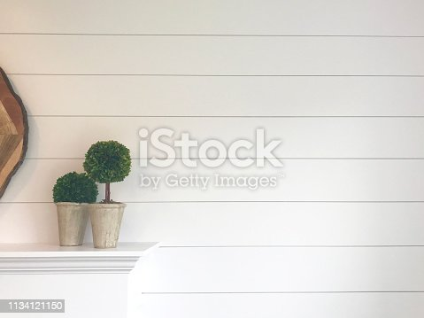 shiplap wall and topiary decorations