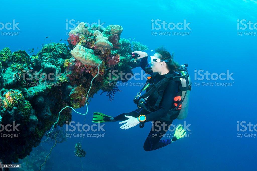 Shipwreck dive - Palau, Micronesia stock photo