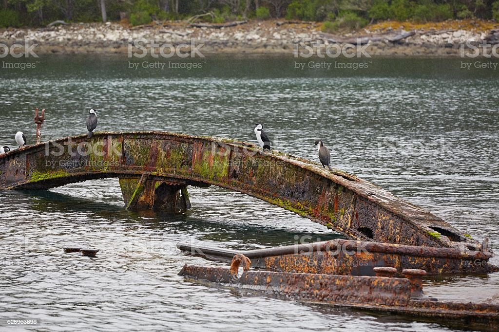 Shipwreck in the water stock photo