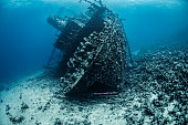 A large partially decomposed shipwreck lying at the bottom of the Red Sea, covered with algae and corals.