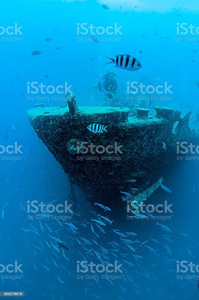 Shipwrecked Vessel stock photo