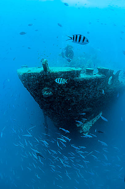 shipwrecked vessel - wreck diving stock pictures, royalty-free photos & images