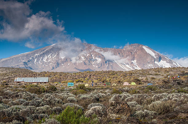 Shira acampamento, Kilimanjaro - foto de acervo