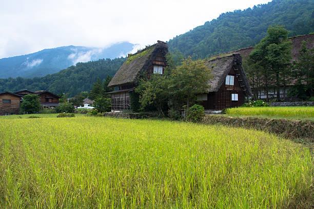 Shirakawago village in Japanese Alps foto